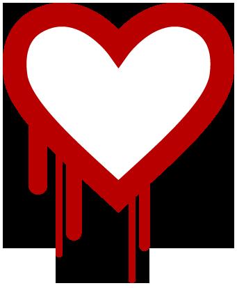 Heartbleed bug explained